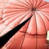 ช่างภาพ ถ่ายภาพ ท่องเที่ยว balloon ติดต่อ Tel. 087 0677 012 ; 082 2557 771